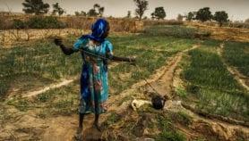 Produire sans détruire, avec l'agriculture de conservation