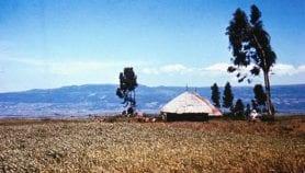 L'injera éthiopien fabriqué avec de l'orge