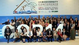 Accord mondial sur la sauvegarde de la biodiversité