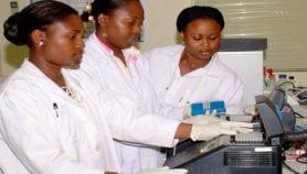 Les régulateurs de biotechnologie exhortés à collaborer plus étroitement