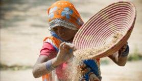 Agriculture: Axer les conseils en technologie sur les personnes