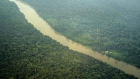 Les forêts, un acteur clé dans la crise de l'eau et les ODD