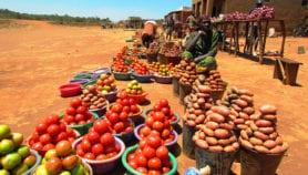 Aider les producteurs locaux à profiter de l'urbanisation