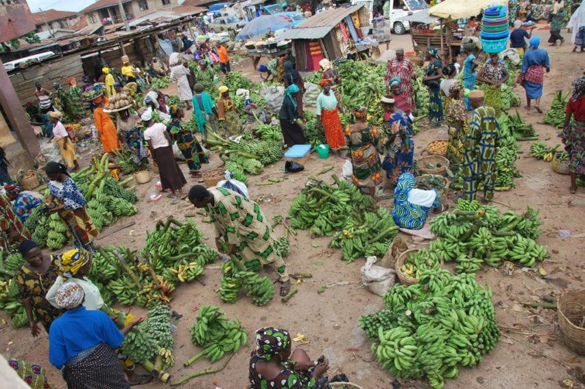 Market_Food security_Key resources_Spotlight IITA