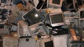 La chaîne alimentaire victime des déchets électroniques