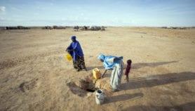 Analyse : Mettre fin au cycle de la faim chronique en Afrique