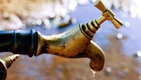 La déforestation réduit l'accès à l'eau potable