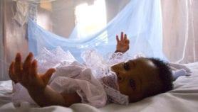 Des moustiquaires renforcées réduisent de 25% les cas de palu