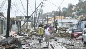 Huracanes severos son una amenaza a bosques del Caribe