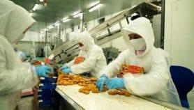 Alimentación de baja calidad en América Latina