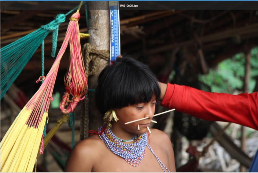 Yanomami2