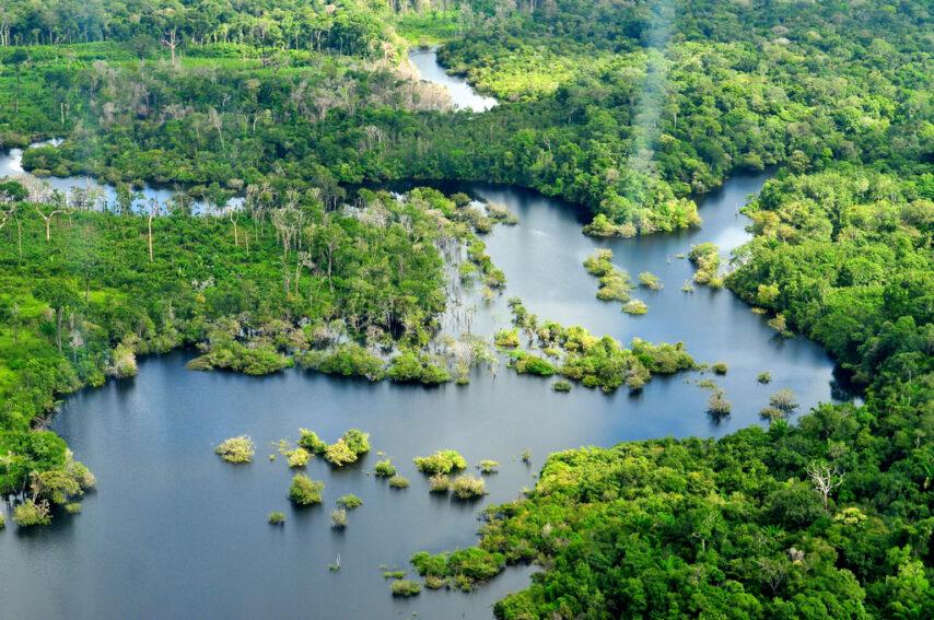 amazonia CIFOR Neil Palmer Flicr