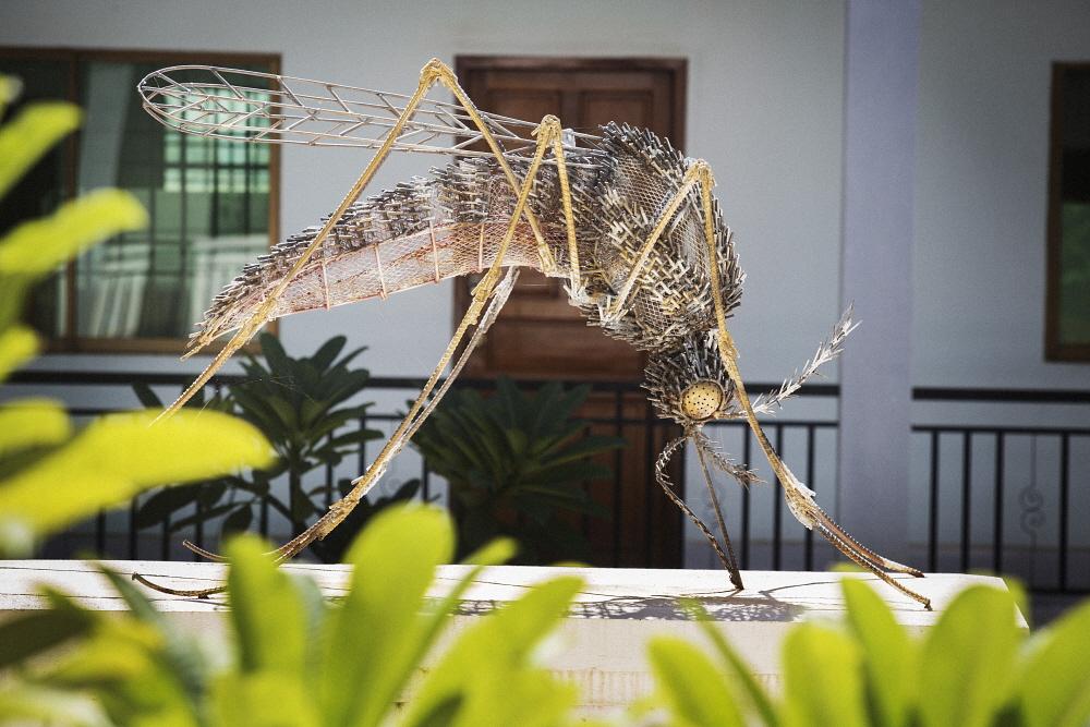 Surinam a la vanguardia en lucha regional contra malaria