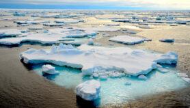 Mundo en desarrollo busca su parte del botín en Antártida