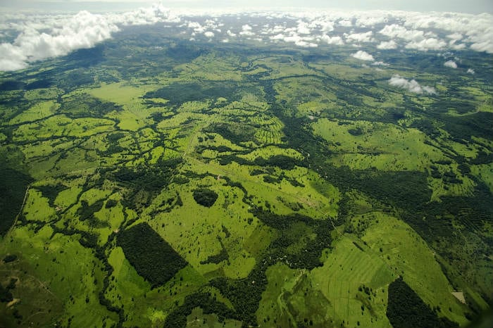 Auge de crecimiento arriesga áreas protegidas de Brasil