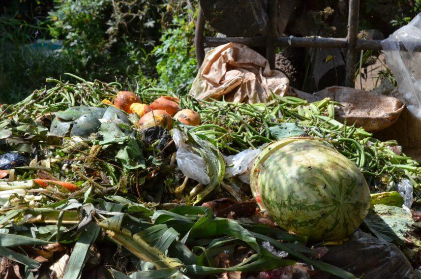 desechos alimentos_Ib Knutsen, FAO Save Food Initiative.jpg