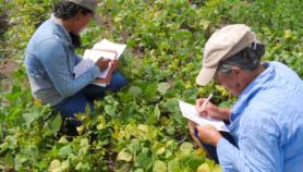 Con ciencia ciudadana mejoran adaptación a cambio climático