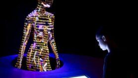 Regular acceso a datos genéticos humanos, ¿para qué?