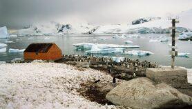Latinoamérica despliega su ciencia antártica