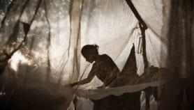 Meta de El Salvador de erradicar malaria está en riesgo