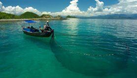 Reservas marinas: aliadas contra cambio climático