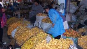 Países pobres serían futuros 'guardianes' de agrobiodiversidad