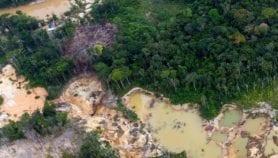 Minería ilegal acelera deforestación en Amazonía venezolana