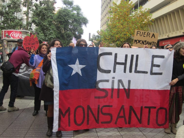 Monsanto Protest_Flickr_Mapuexpress