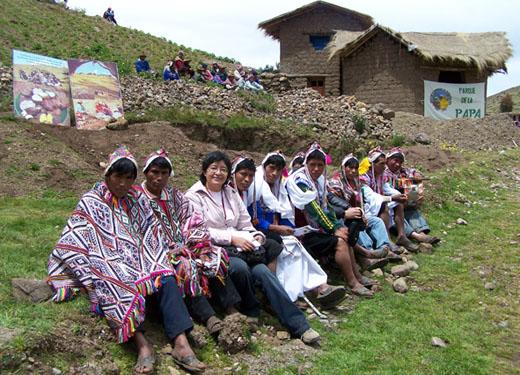 El Parque de la Papa se encuentra en el Cusco, al sur de los Andes peruanos, en pleno Valle Sagrado de los Incas, cuna de una de las civilizaciones más avanzadas de Latinoamérica.
