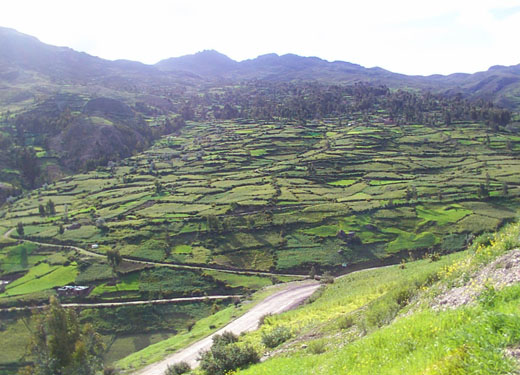 El territorio del parque abarca más de 12.000 hectáreas entre los 3.150 y 5.000 metros de altura.