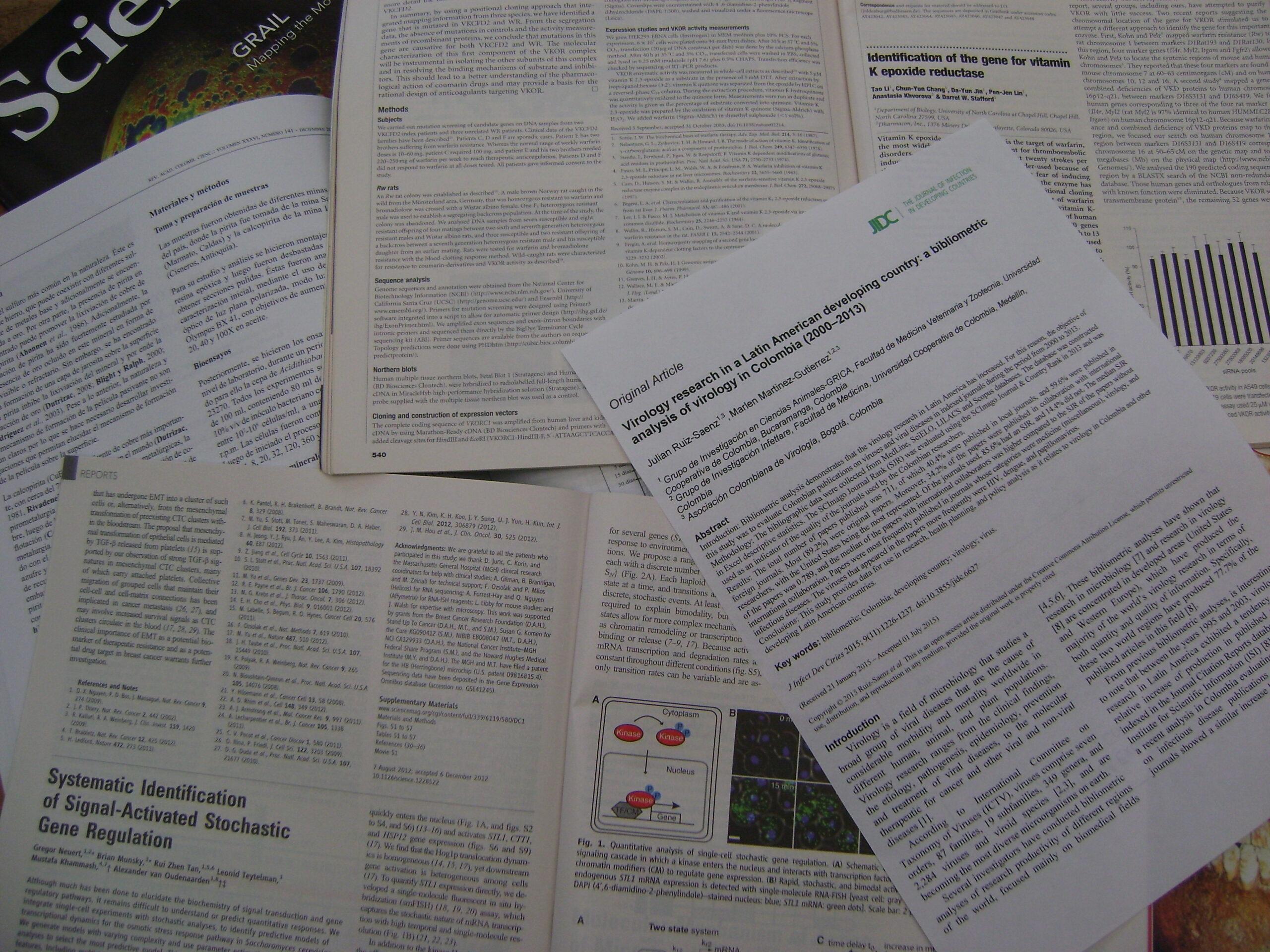 Cómo reportar a partir de un artículo científico