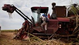 Brasil: proponen modelo para producir etanol sin deforestar