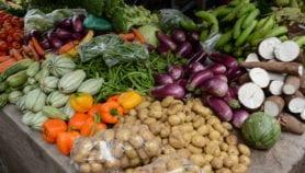 América Latina podría ser proveedora mundial de alimentos en 2050