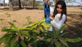Cercanía con la naturaleza favorece interés en biodiversidad local
