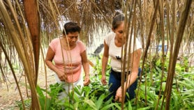 Alta tasa de infecciones de transmisión sexual en mujeres rurales de La Paz