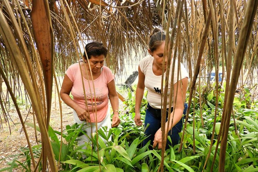 bolivia_amazon by UN Women-Teófila Guarachi.jpg