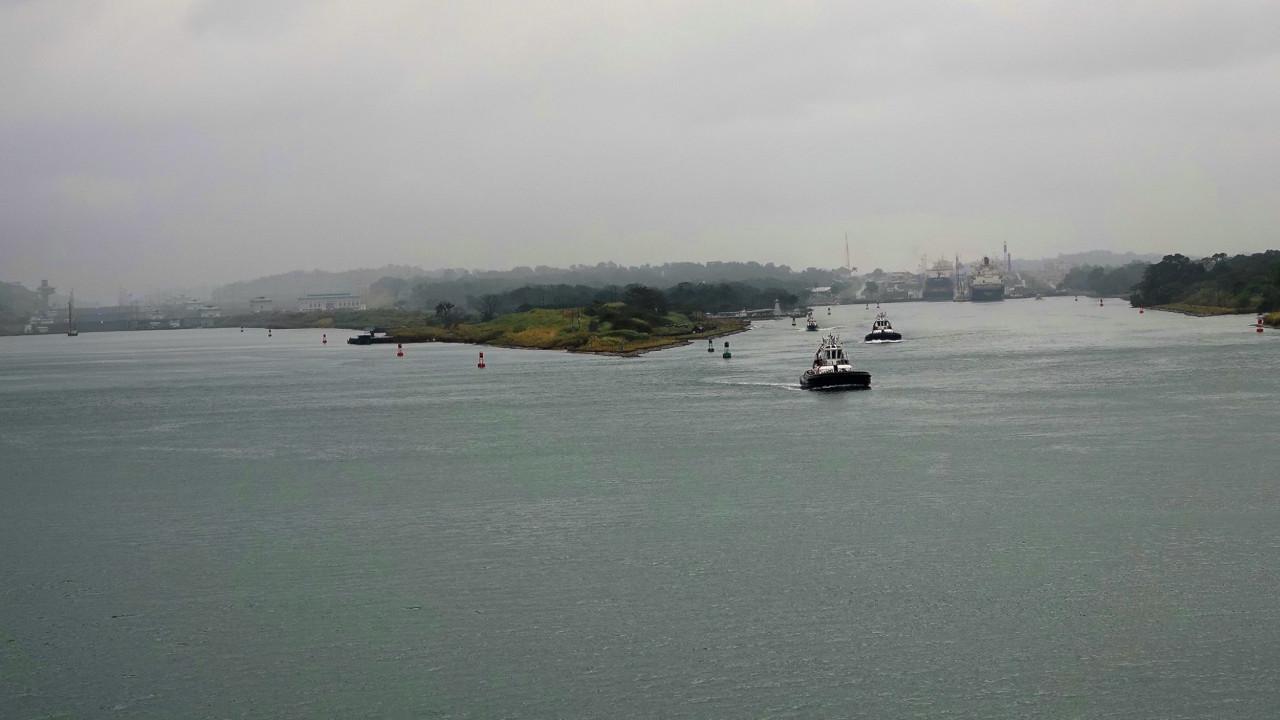 Canales de Suez y Panamá facilitan llegada de peces invasores