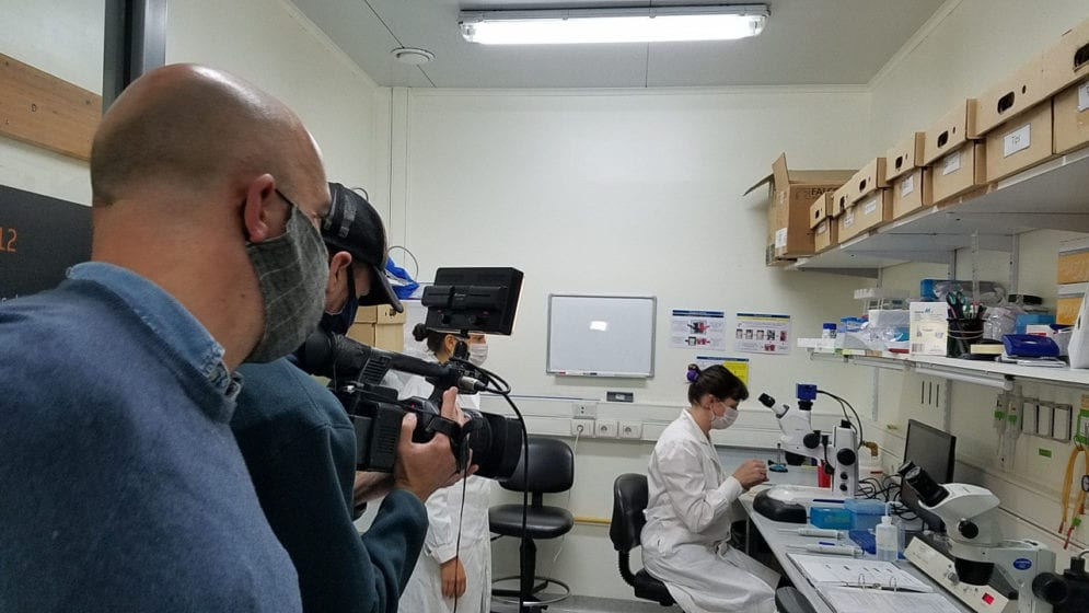ciencia post-pandemia