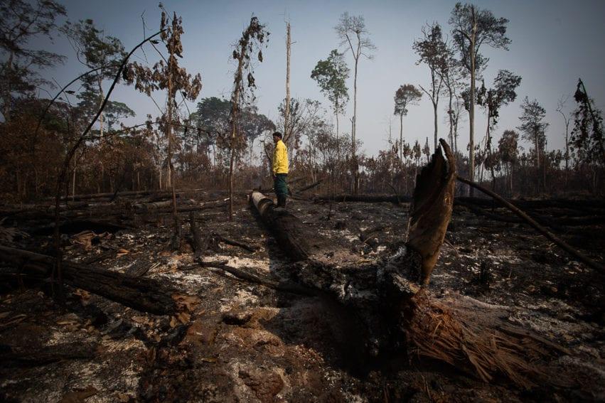 degradación Amazonas1