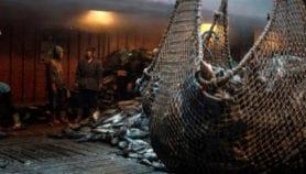 Flota pesquera china amenaza recursos en países en desarrollo