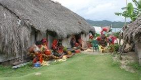 Malaria aumenta en pueblos indígenas de Panamá