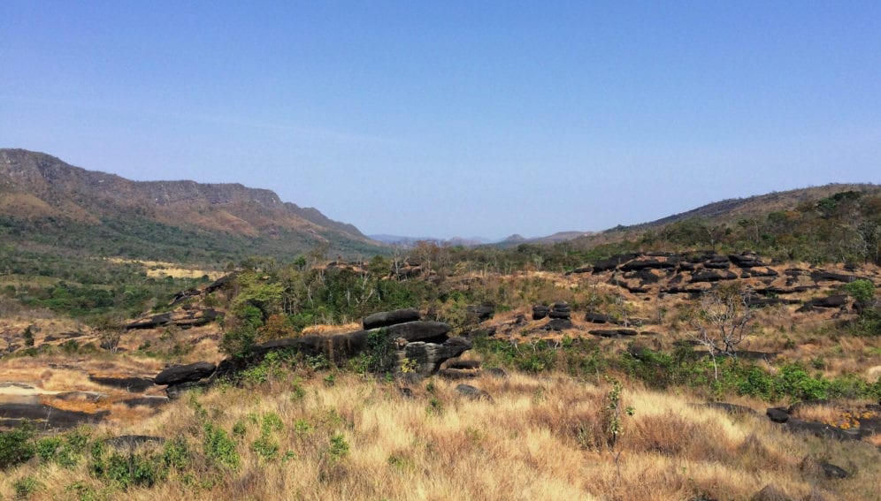 restauracion ecosistemas
