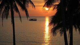 Contaminación amenaza áreas marinas protegidas de la región
