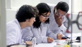 Inversión en ciencia se desacelera en la región