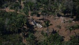 Pandemia encubre retrocesos en leyes ambientales de Brasil