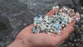 Microplásticos también en playa protegida de Guatemala test