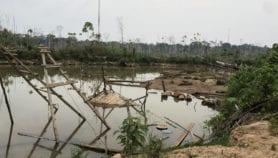 Perú: minería artesanal está arrasando región amazónica