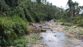 Huracán María aumentó genes de resistencia antimicrobiana en el agua