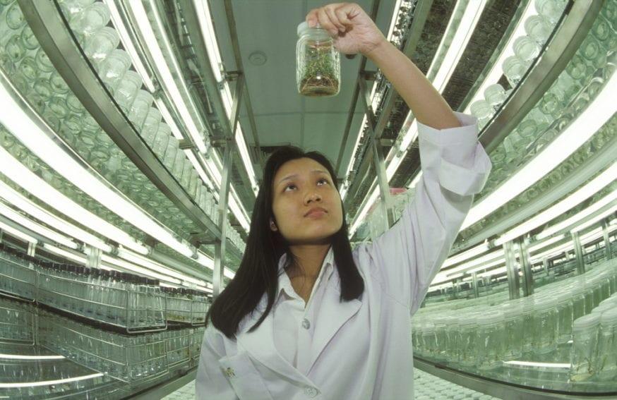 Thai woman scientist