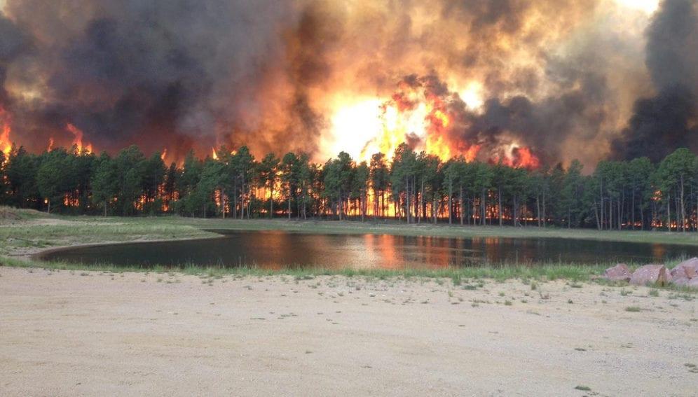 Forest_fire_Flickr_USDAgov_1024x768